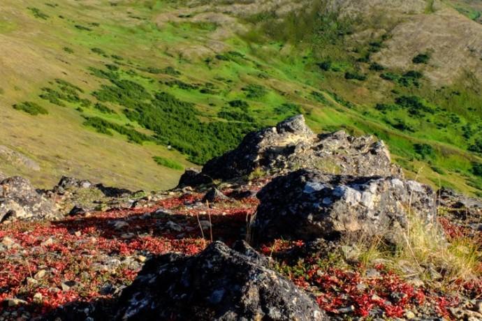 chugach-mountains-from-flattop-anchorage-alaska-photo-treks