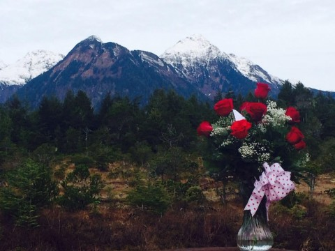 If you love gorgeous scenery, an Alaskan honeymoon may be perfect for you.