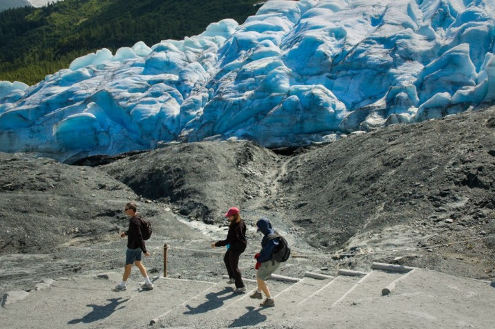 Walk up to a glacier at Exit Glacier Trail