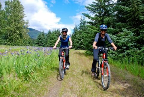 Rent a bike with Sockeye Cycle Co.