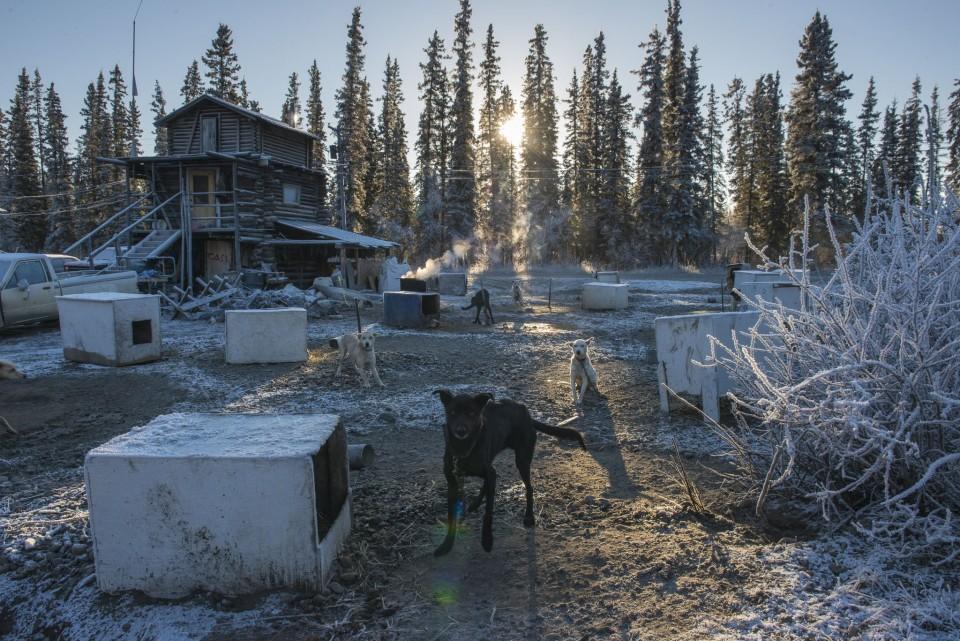 Carl Johnson Fort Yukon 1016 FOYU AK 2050