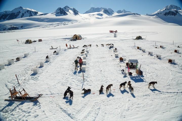 Jeff Schultz Mushing Tour Chugach Mountains 150613 4 M6848