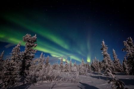 Jeff Schultz Northern Lights Viewing Fairbanks 170107 5 M4415