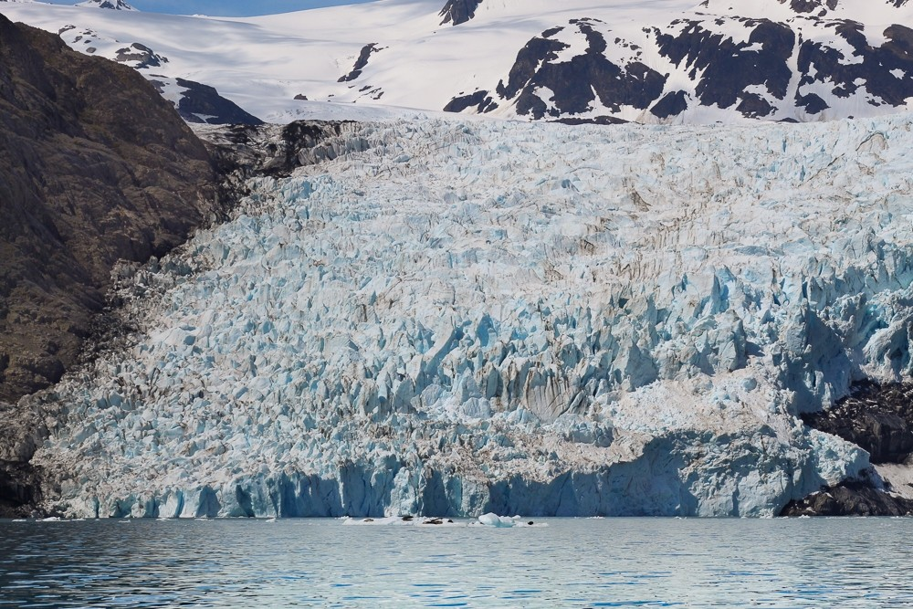 View of Excelsior Glacier from Big Johnstone Lake