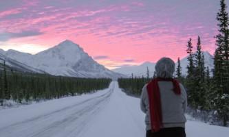 Alaska Arctic Tours