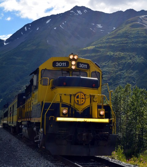 An Alaska Railroad Train at the Whistle Stop