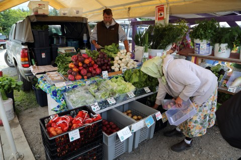 A woman shops for produce at the Homer Farmer's Market