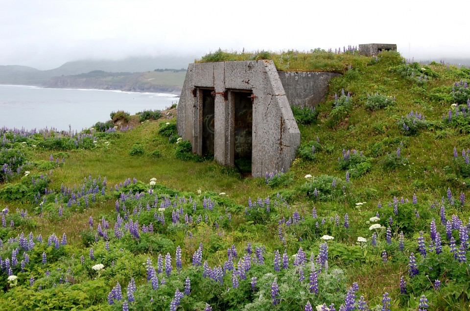 Building remains from Fort Greely on Kodiak Island