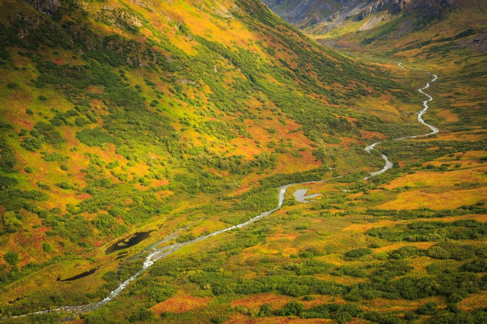 The Alaska backcountry with a river running through a mountain valley.