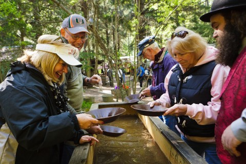 A group of people gold panning