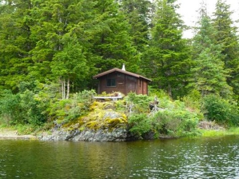 Jim's Lake Cabin nestled in the woods next to Jim's Lake