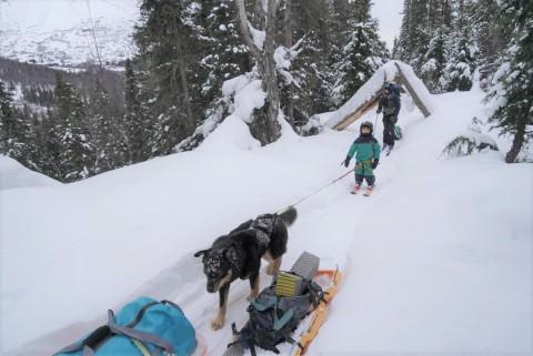 Ari Stiassny Resurrection Pass Ski 2020 Feb Taz Ari