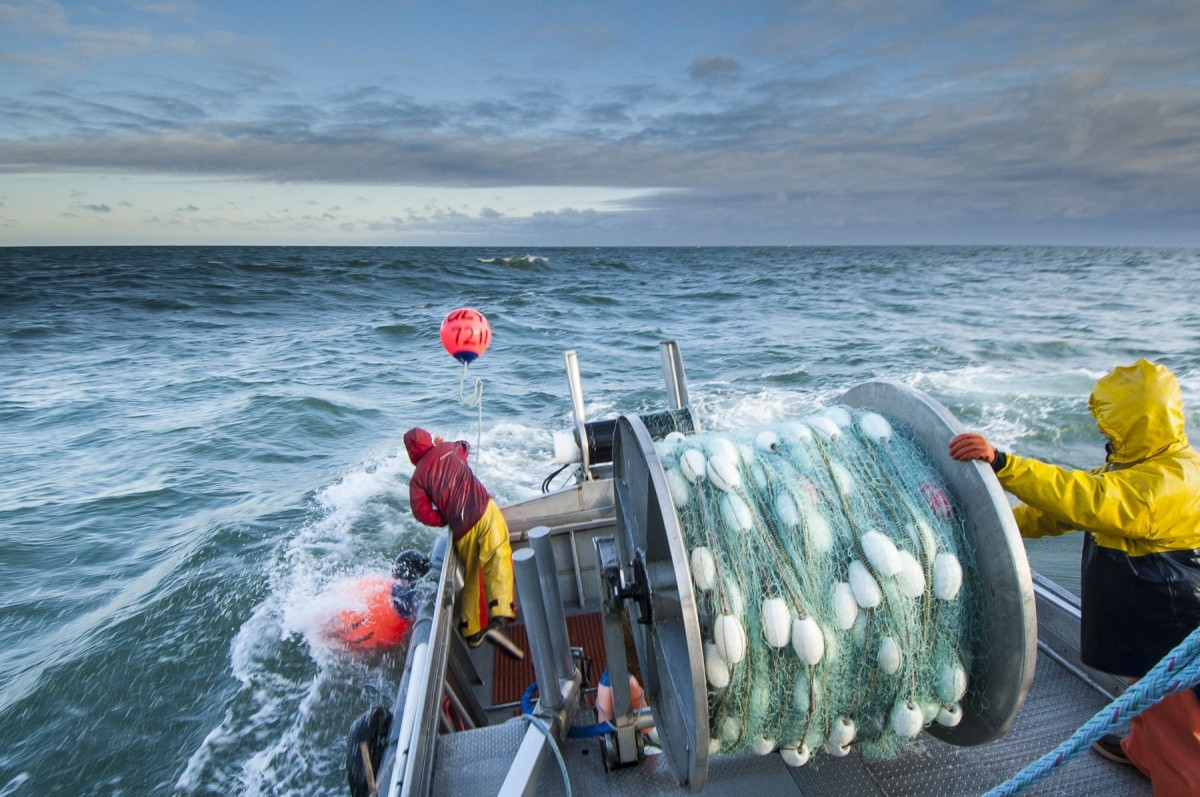 Carl Johnson commercial fisherman Bristol Bay 0711 BRBY AK 2340 Edit