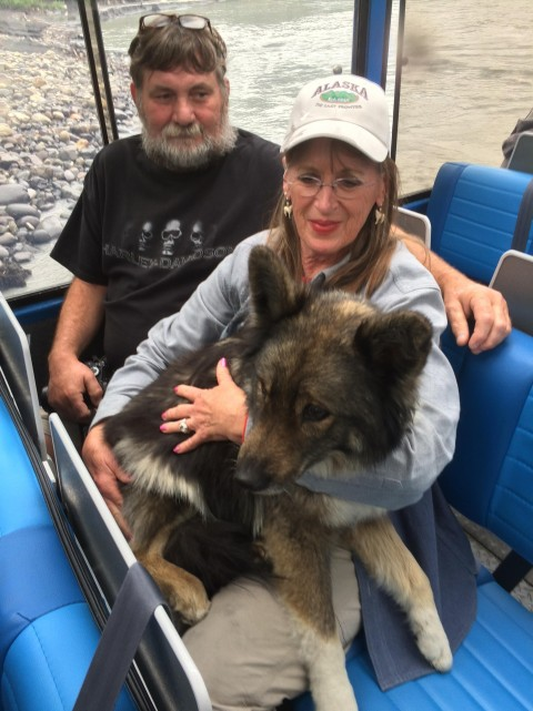 Israel Mahay Dog Rescue1