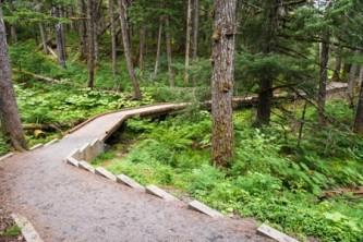 Chugach national forest parks trails Winner Creek 13 08 008 2013 Jody Overstreet