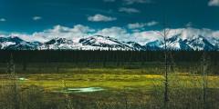 Denali national park trip ideas landscape with mountains in denali national park alaska
