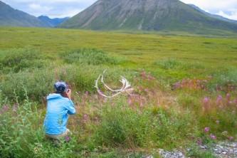 Fairbanks arctic tours natc
