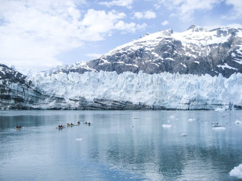 Kayak or cruise by massive tidewater glaciers