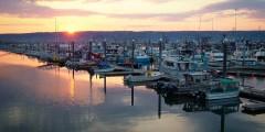 Best things to do in homer Homer TNC 161 Alaska Channel