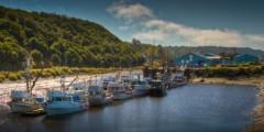 Kenai peninsula IMG 5979 80 81 Enhancer Kerry Williams