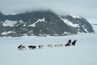 Seward dog sledding Alaska Channel