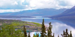 skagway city sightseeing tours Bove island ray