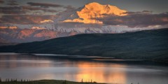 Denali National Park Main