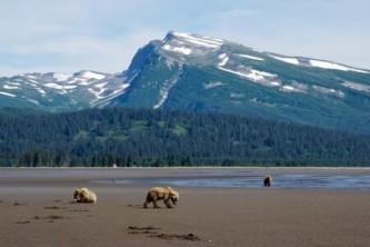 Lake Clark National Park2