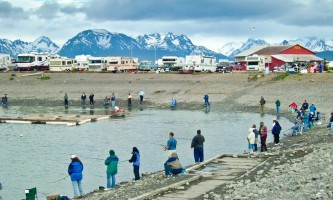 Where To Get Your Alaska Fishing License Homer June 04 023 o1643q