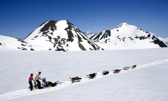 0 Best Alaska Excursions mj9qz3