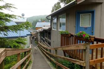 Elfin Cove Elfin Cove P1030753 o1w729