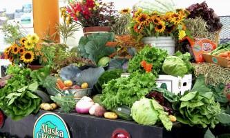 Best food alaska vegetables warren moore pl4uyj