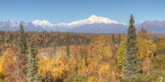 Anchorage to Denali National Park Driving Map