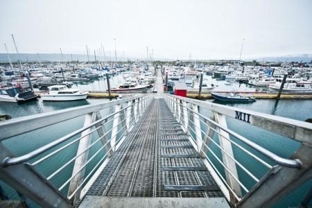 Alaska homers small boat harbor janet kotwas Janet Kotwas Homer