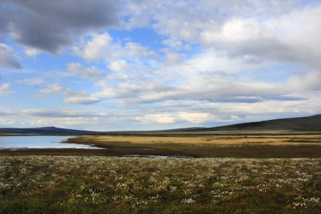 Nome-Taylor Highway Scenic Drive