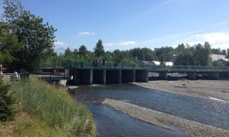 Salmon_Viewing_at_Ship_Creek-04-n8vule