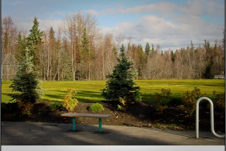 Campbell Creek Park