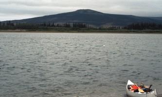 Salmon-18-mj5jrj