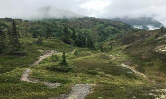 Winner-creek-to-20-mile-Image_2-Trail_through_Berry_Pass-p1zye0