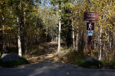 Burney's Trail