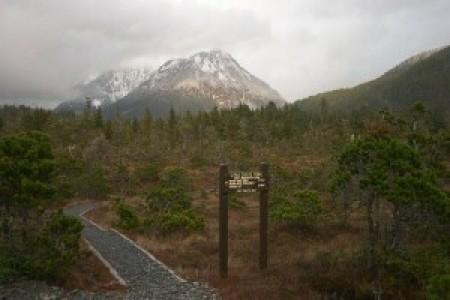 Cross Trail