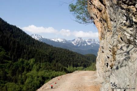 Perseverance Lake Trail