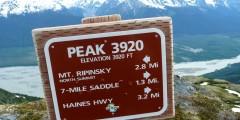 3920 Trail
