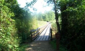 Alder-Trail-01-mxq46j