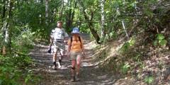 Bird Ridge Trail
