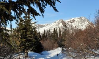 Hemlock-Knob-Trail-02-mxq686