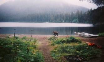 Kook-Lake-Trail-01-mxq6kz