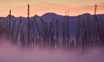 Long-Lake-Trail-Hillside Copy_1-nhvzh1