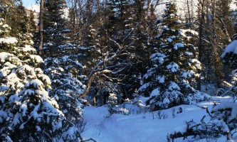 Lost-Cabin-Valley-Trail-01-mxq6py