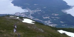 Mount Ripinsky Trail
